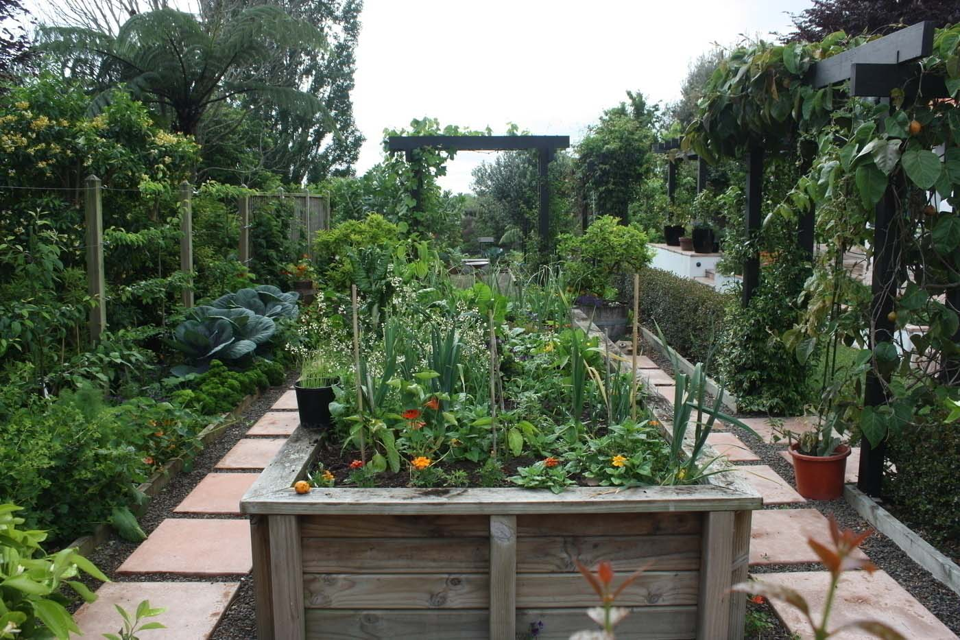 More raised vegetable gardens and espeliered fruit